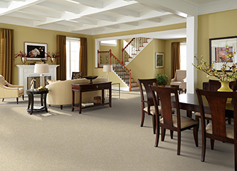 Shop our Featured Softique Carpet by Alexander Smith in the Online Product Catalog.